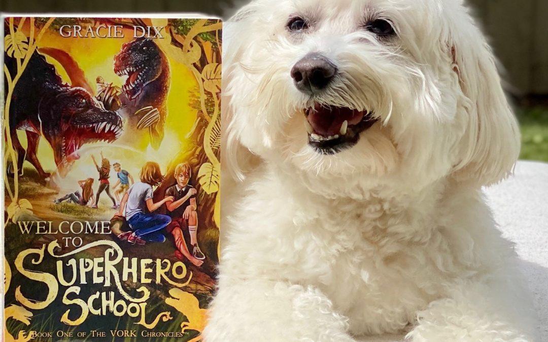 Welcome To Superhero School & A #1 Amazon New Release!